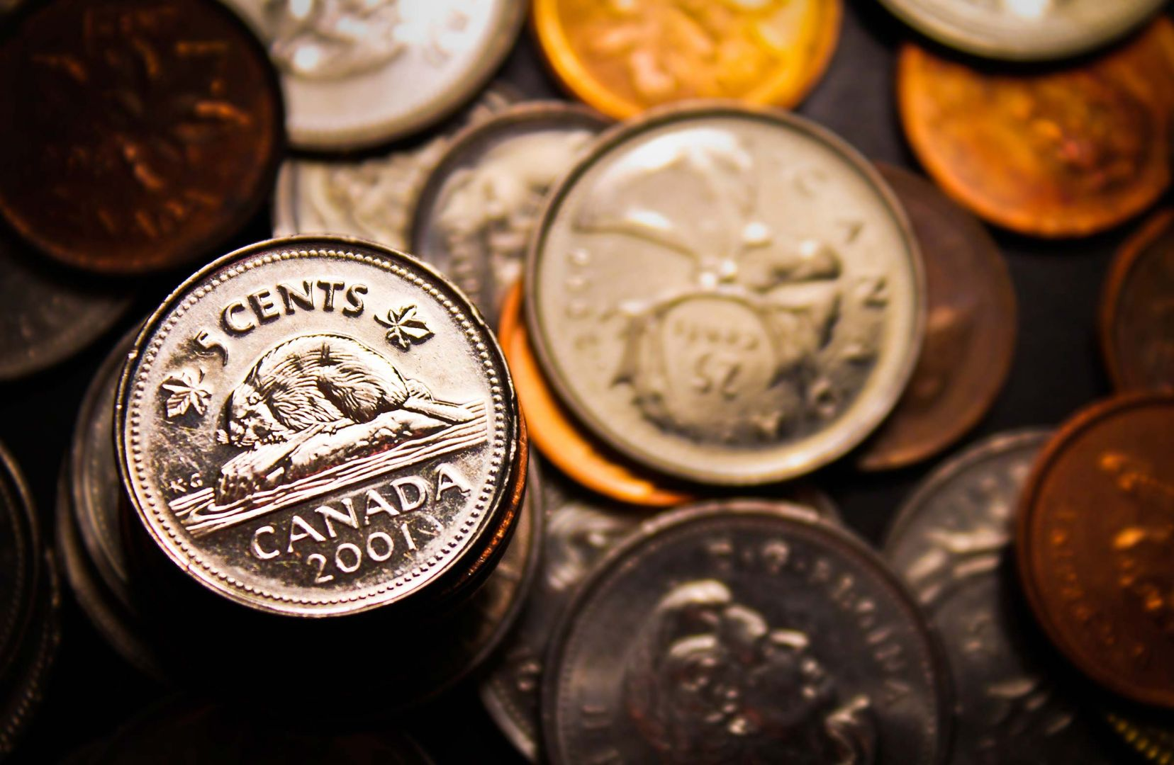 14-13-international-laws-youd-never-know-were-real-canadian-coins