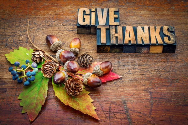6240359_stock-photo-give-thanks-thanksgiving-concept